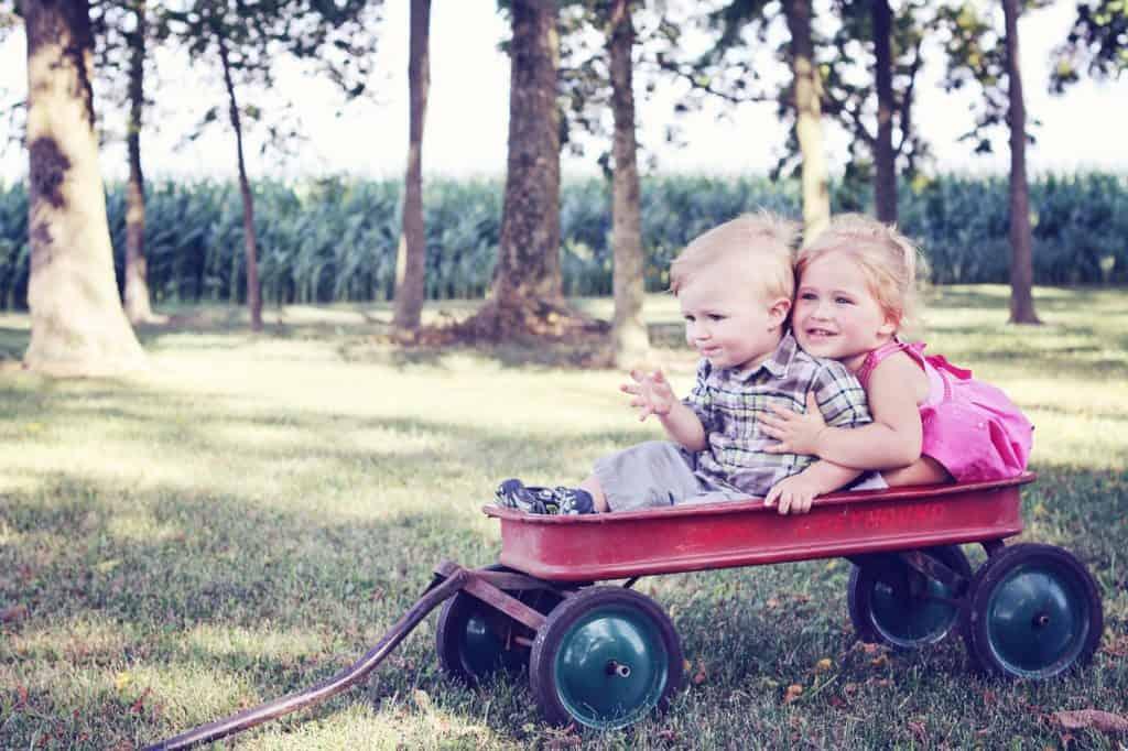 youth, children, wagon