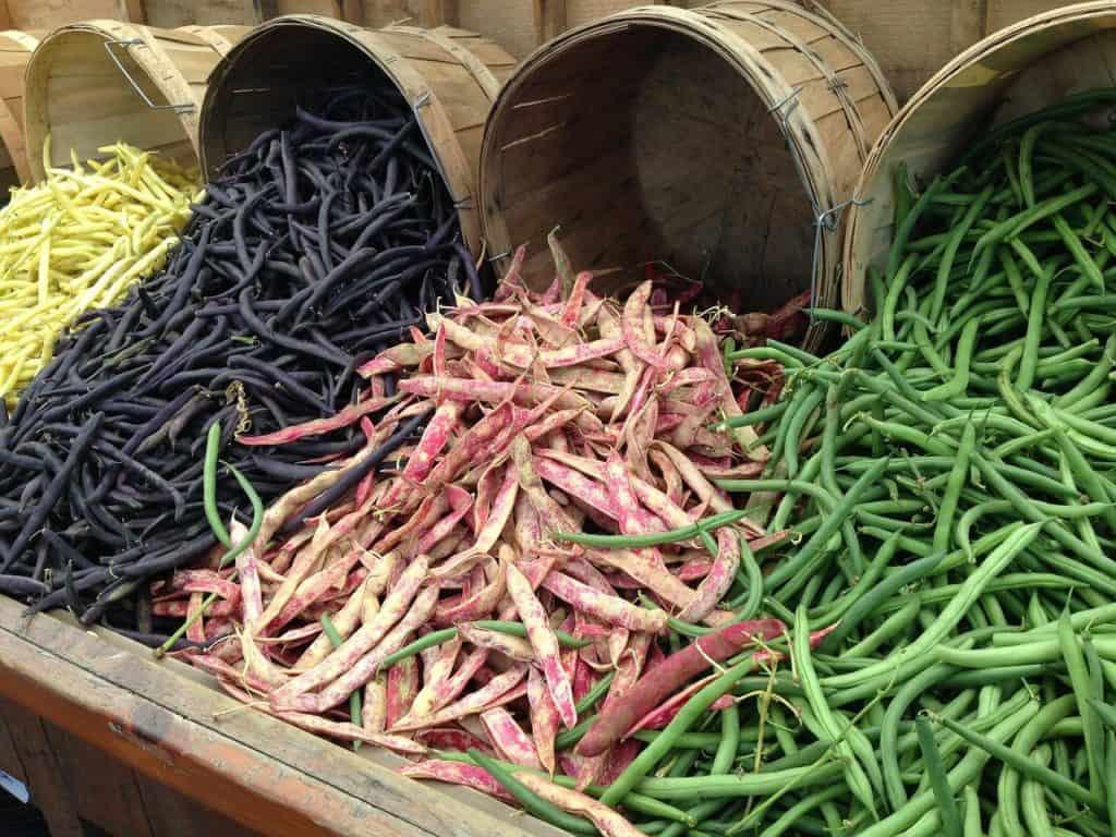 beans, leguminous plants, legumes